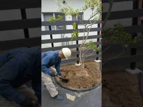 出雲市 外構 エクステリア 庭 土壌改良