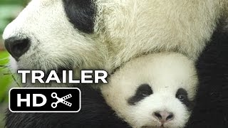 Nonton Born In China Official Trailer  1  2017    Disneynature Movie Hd Film Subtitle Indonesia Streaming Movie Download