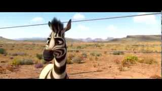 South Africa makes history! Khumba DVD's coming soon in ENG, AFR and isiZulu! Check out this hilarious isiZulu scene from the Khumba DVD. In stores on the ...