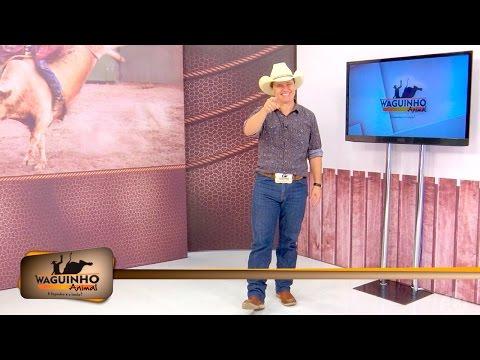 Waguinho Animal 19/03/16 na íntegra | Rodeio em Monções