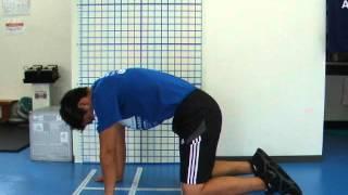 【体幹部周辺の柔軟性獲得!】腰痛改善にもおすすめである「キャット&カウ」