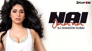 Like :: www.facebook.com/djshadowdubai Produced for Sean Paul  Badshah  Bohemia and More Officially Remixed for Jay Sean  Yo Yo Honey Singh  RDB ...