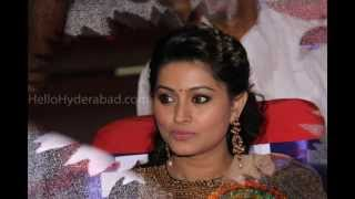 TSR Tv9 Film Awards - Sneha - April 20th, Saturday, 2013, Shilpa Kala Vedika