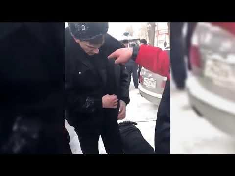 Полицейский пинает собаку, а я его — пакетом. Пьяным был не сотрудник полиции