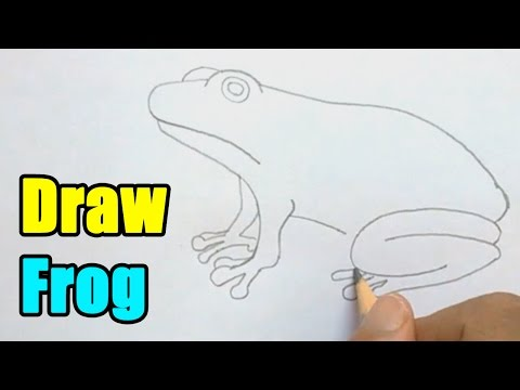 How to Draw a Frog - Very Easy