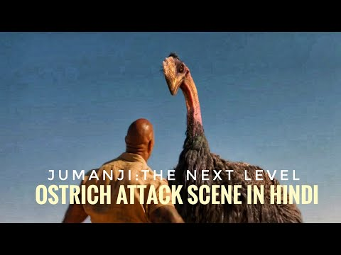 Jumanji:The Next Level Movie Ostrich Attack scene in Hindi |#Jumanji2 (2020) |MoViEs MaN |#Subscribe