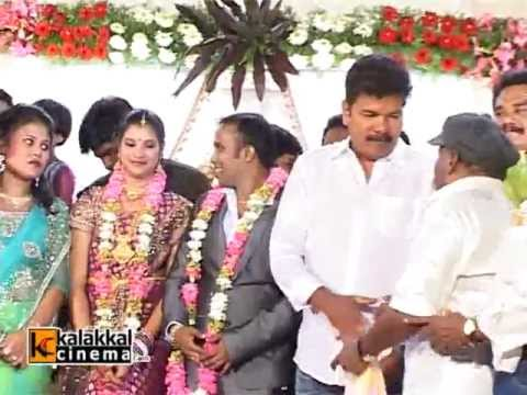 Senthil - Comedy Actor Senthil Son Hemachandharapribhu Wedding Reception.