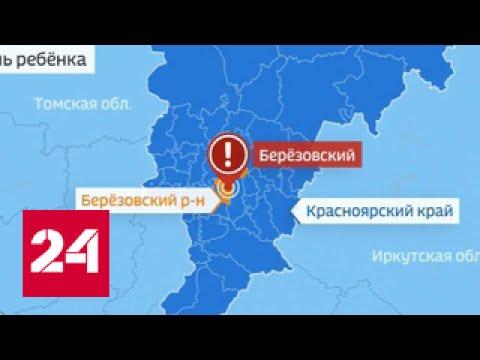 Пьяный сбил детей под Красноярском: мальчик погиб, две девочки ранены (видео)