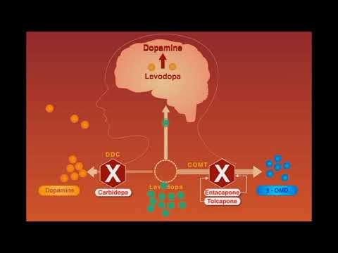 Parkinson Disease Animation
