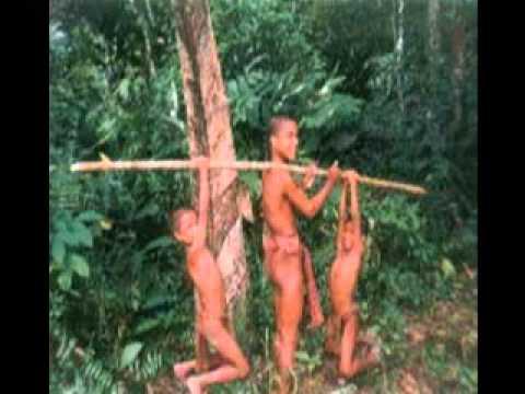 Suku Primitif - suku anak dalam (suku kubu) adalah suku primitif yang ...
