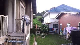 Residential Land next to Aszi Homestay, Taman Sedia, Tanah Rat...