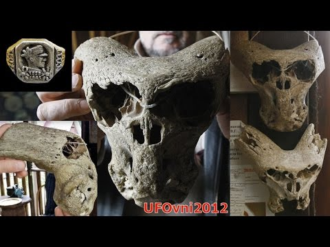 One Of The Strange And Annunaki Skulls Found Adygea, Russia