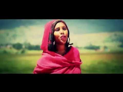 Hirut Negesue - Ferahugn(ፈራሁኝ) - New Ethiopian Music 2017