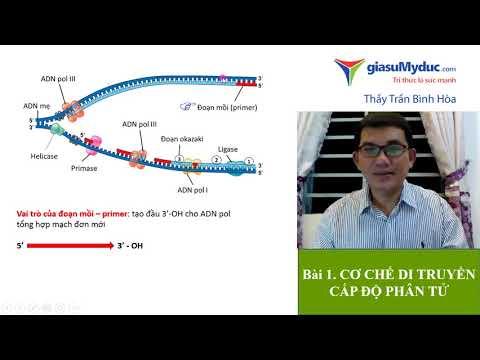 Bài 1 Cơ chế di truyền cấp độ phân tử - Luyện thi THPT Quốc gia Môn Sinh Học