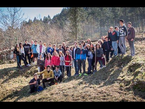 Reforestación nos montes da CCMM de Couso feita polos rapaces de 2º de ESO do IES Proval