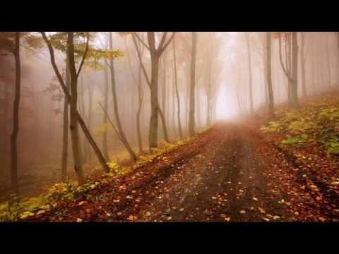 Lake Of Tears - So Fell Autumn Rain [Unofficial] (2012) [HD 720p]