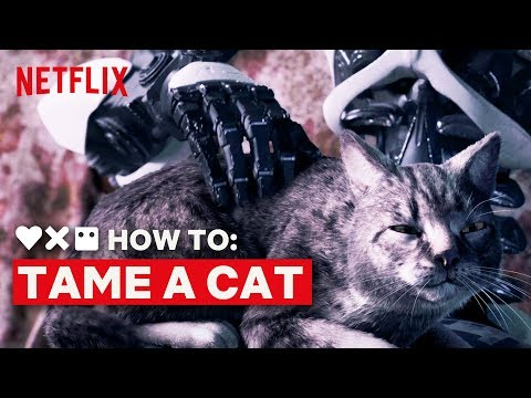 LOVE DEATH + ROBOTS | How to Tame a Cat | Netflix