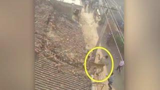 نمر يهاجم أهل قرية في الهند ويصيب عامل إنقاذ