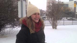 Hamilton (ON) Canada  city photos gallery : Dia de neve em Hamilton, Ontario - Canada