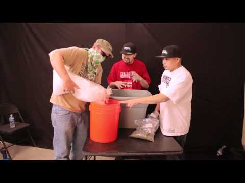 Hemp Vision TV Crew shows CO2 and Ice Water Extraction.