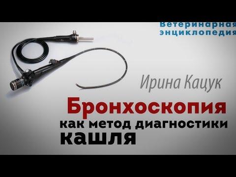 Метод диагностики кашля. Бронхоскопия