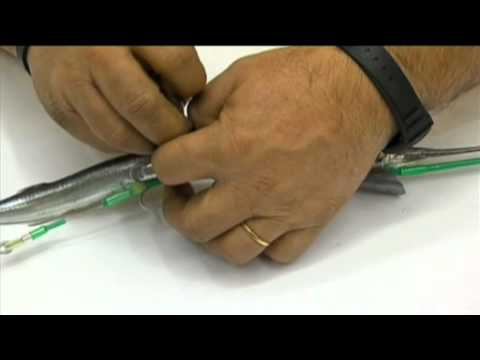 Συρτή για λούτσους και αρπαχτικά με δόντια