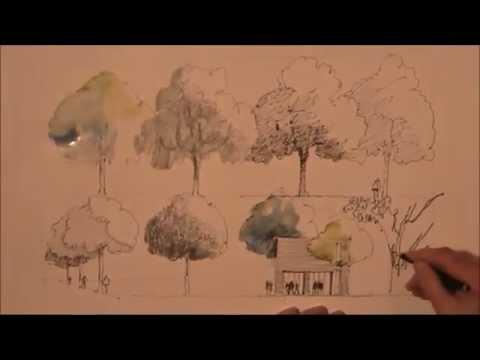 Bäume zeichnen lernen