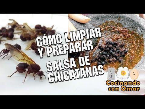 Cómo limpiar y preparar Chicatanas - Cocinando con Omar (feat mis primos)