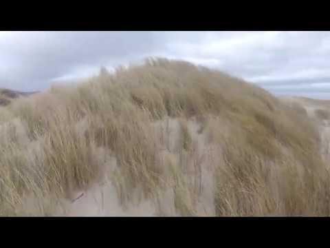 Orkan Sabine / Sturmtief über St. Peter-Ording an der ...