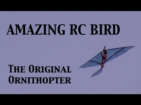 RC Bird (Ornithopter)