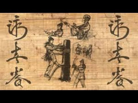 Aikido vs Wing Chun free sparring
