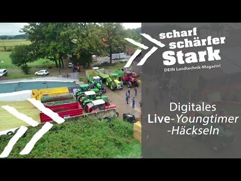 STARK Youngtimer Häckseln (live)