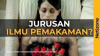 Video KERENNN! 5 Jurusan Kuliah Unik Di Seluruh Dunia! Indonesia Juga Ada Lohhh MP3, 3GP, MP4, WEBM, AVI, FLV Oktober 2018
