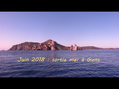 sortie mer à Giens 2018