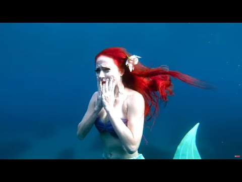The Last Mermaid Ariel ( The Little Mermaid )