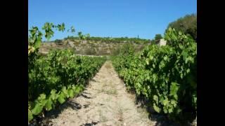 Fitou Village Vigneron vous accueille