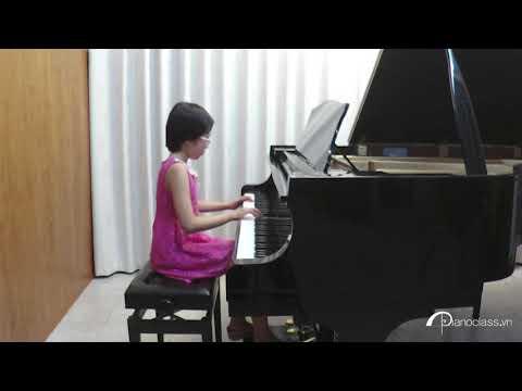 CARROL-THE REEF - Nguyen Phan Viet Hoa