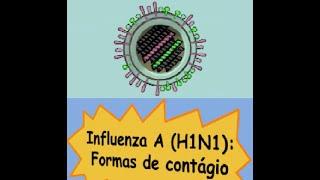 Gripe H1N1: Aprenda como evitar a transmissão.