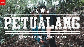 Video Sang Petualang 10 - Bertemu King Cobra Super MP3, 3GP, MP4, WEBM, AVI, FLV Mei 2019