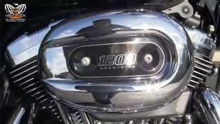 7. New 2016 Harley Davidson  Sportster 1200 low for sale
