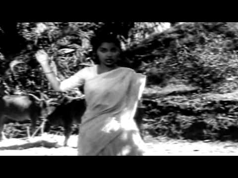 Kaagaz Ke Phool - Ek Do Teen Char Aur Paanch - Geeta Dutt & Chorus