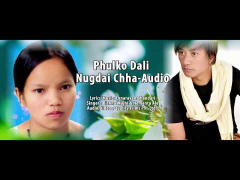 (New Lok Dohori Song | Phulko Dali Nugdai Chha | Bishnu Majhi & Hemanta Ale | Official Audio - Duration: 5 minutes, 38 seconds.)