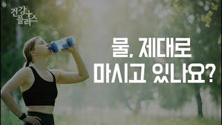 물 제대로 마시고 있나요? [건강플러스] 미리보기