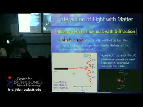 Licht/ Gewebe Interaktionen