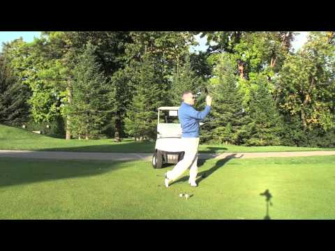 Driver High Draw Shawn Clement Wisdom In Golf