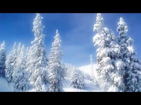 Tekst piosenki Grandaddy - Alan Parsons in a Winter Wonderland po polsku