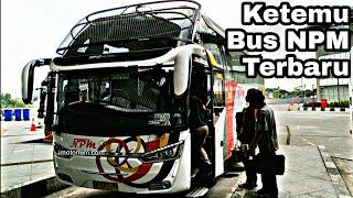 Video Ini Dia Bus - Bus Sumatera Yang Ada Di Terminal Pulogebang Jakarta MP3, 3GP, MP4, WEBM, AVI, FLV Mei 2019