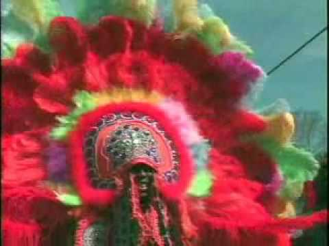 Collection - New Orleans Mardi Gras Indians