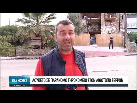 Παράνομο γηροκομείο στο λιθότοπο Σερρών | 17/10/2020 | ΕΡΤ