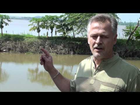 3 Minute Market Insight – Episode #7 – Vietnam Pangasius Fish Farms